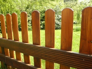Fence Ordinance